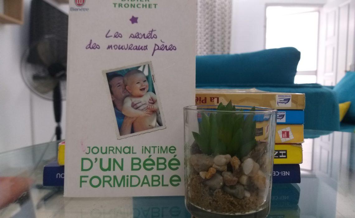 Journal intime d'un bébé formidable, Didier Tronchet
